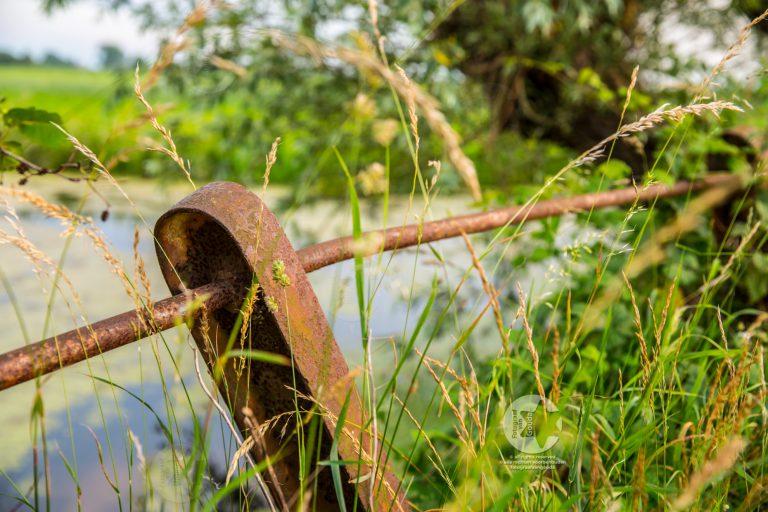 gouda-1606002-fotograafvangouda.jpg